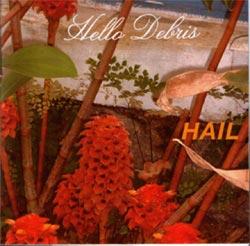 HAIL: Hello Debris