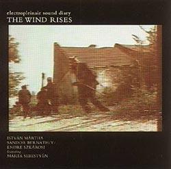ELECTROPLEINAIR SOUND DIARY:  The Wind Rises