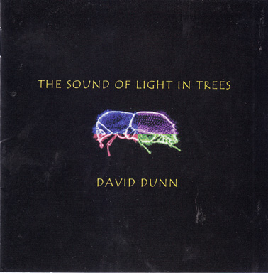 DUNN, DAVID: The Sound of Light in Trees